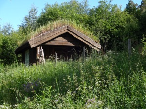 This is a Turf Roofed structure, typical of Norway. I got a bit lost in Lillehammer, but stumbled upon this awesome house!