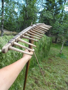 This is the repaired hay-rake, expertly repaired by my host, Dan. The tines are made of birch, we leave them out in the open weather so the wood will swell and become tight in their respective holes.