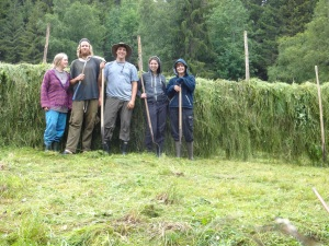 Pictured from left to right, Hanna and Dan, my gracious hosts, Me (The Beardless Farmer), Kim (Netherlands) and Camille (France). We just finished the hay-rack and it began to rain, perfect timing.