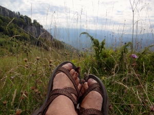 Resting my weary feet among newfound friends. A butterfly resting its weary wings, as a strong wind blows past.