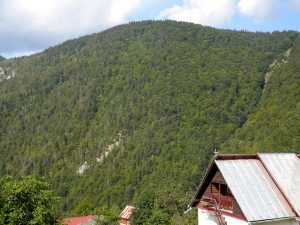 This is Magura. Mountains, Orthodox Christianity, wooden homes, and stunning beauty.
